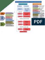 MAPA CONCEPTUAL CLASIFICACION DE LOS BIENES