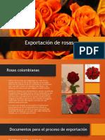 Exportación de rosas