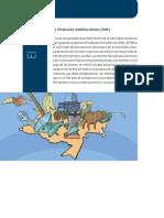 EL PRoDuCto IntERno BRuto.pdf