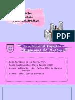 GARRIDO TAREA 1 DIAPOSITIVAS D PROCESAL ADMINISTRATIVO