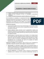 Práctica IV placenta y envolturas fetales