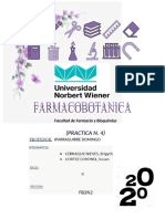 PRACTICA 4 - FARMACOBOTANICA