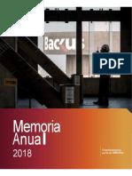 Memoria-Anual-2018-Backus.docx