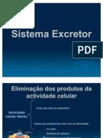 121_sistemaexcretor