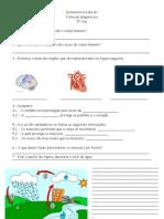 Ficha de diagnóstico 5º ano
