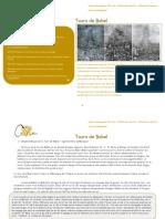 Tours de Babel - Dossier Pedagogique