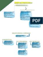 Patologia especial VET.