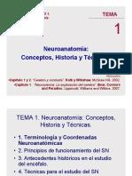 Tema 1A 13 neuro