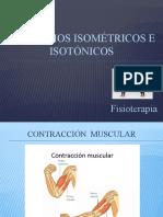 capsula ejercicios isometricos e isotonicos }