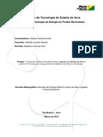 Relatório_Funtac_Geração_de_Energia_Elétrica_Óleos_Vegetais_e_Biocombustíveis