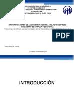 presentacion tesis gelli ucv