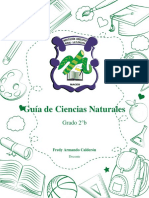 Guía de Ciencias Naturales-Fotosintesis