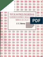 RAVEN RESUELTO.pdf
