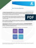 U1L3_MarcolegaldelSFmexicano.pdf