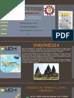 INDONESIA- PEREDA GOMEZ PAOLA DALESKA