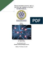 UNIVERSIDAD INTERNACIONAL DE LA INTEGRACION DE AMERICA LATINA