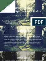 Características de las especies forestales (2)