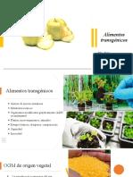 Alimentos transgénicos.ppt