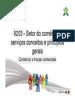 Comércio e trocas comerciais.pdf