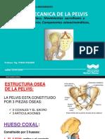 11.-_BIOMECANICA_DEL_MOVIMIENTO_PELVIS (3)