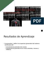 Clase 05 Generalidades Del Sistema Cardiovascular