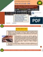 PROCESO-DE-CONTROL-DE-GESTIÓN-DE-LAS-EMPRESAS-MINERAS-Y-SUS-HERRAMIENTAS-ADMINISTRATIVAS (1)