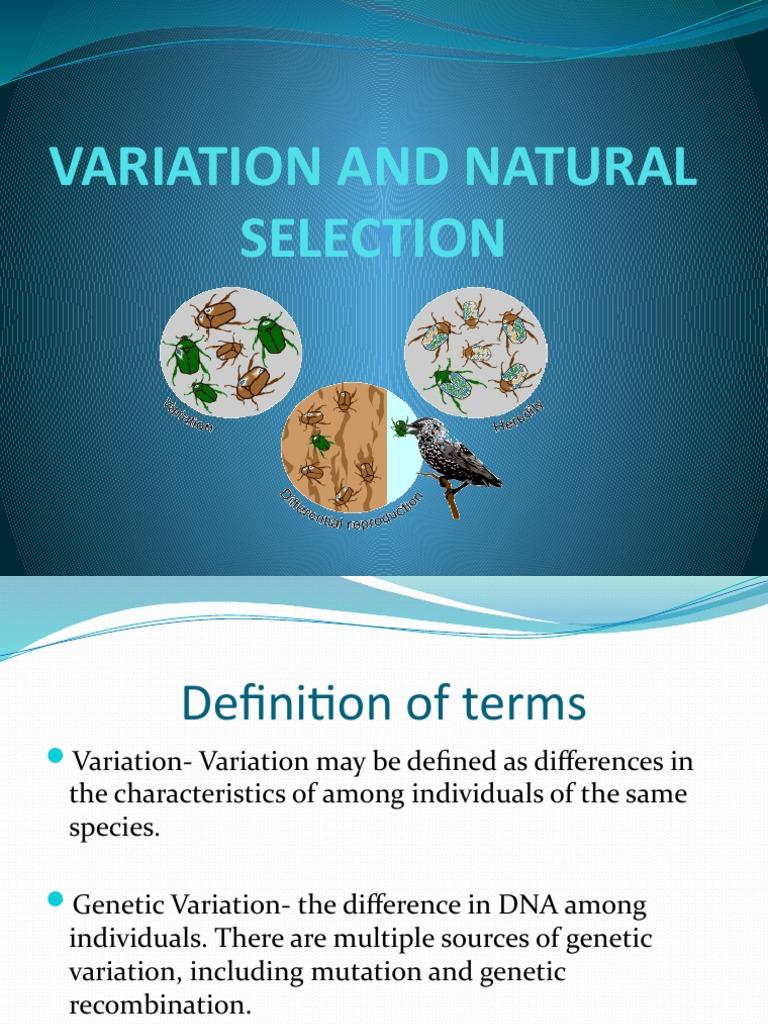 Definition natural selection Natural selection