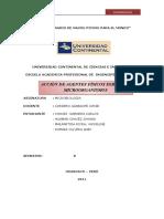 INFORME DE MICROBIOLOGIA- marco teorico