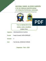 Análisis Crítico N°1.docx