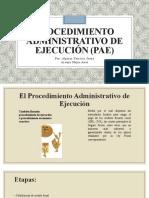 2 Procedimiento Administrativo de Ejecución (PAE)