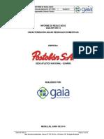 CARACTERIZACIÓN ARD.pdf