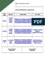 Taller N° 13 Programa Anual de Auditoria.doc