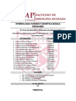 Tarea 11-SEMINARIO EMBRIOLOGIA-GRUPO 28