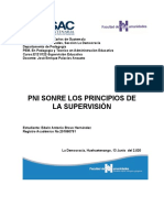 PNI Principios de la Supervisión