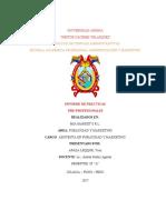 Informe de Practicas Final