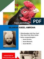 AMROHA ASEEL2