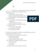 Semana 10consoolidacion 26 tema 2 acapite 2.5 Telencefalo.doc