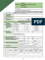 Directiva_042019OSCE.CD_Formato_Resumen_Ejecutivo_20190404_214814_118