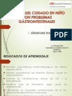 Síndrome daiarreico agudo en pediatría 2019.pdf