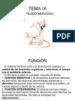 Tema Ix El Tejido Nervioso y Sistema Nervioso