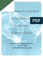 Manual Reprogramacion espiritual en la columna