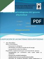 1. Bacterias Disolventogenas Del Genero Clostridium