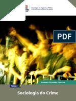 eBook_Sociologia_do_Crime-Tecnologia_em_Seguranca_Publica_UFBA.pdf
