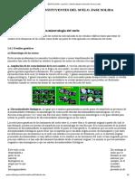 EDAFOLOGIA. Lección 2. Interés estudio minerales de los suelos_.pdf