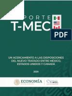 Publicacion Reporte T MEC 2020 Consolidado