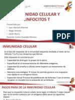 INMUNIDAD CELULAR Y LINFOCITOS T (1)