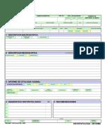 Form. 013 B -2008 -HISTOPATOLOGIA-INFORME