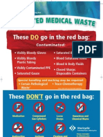 Red Bag Poster