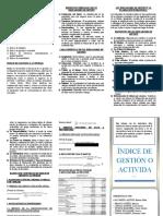 TRIPTICO INDICE DE GESTION.docx
