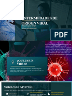Enfermedades de origen viral